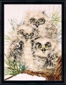 Design Works Crafts Owl Trio counted cross stitch picture kit